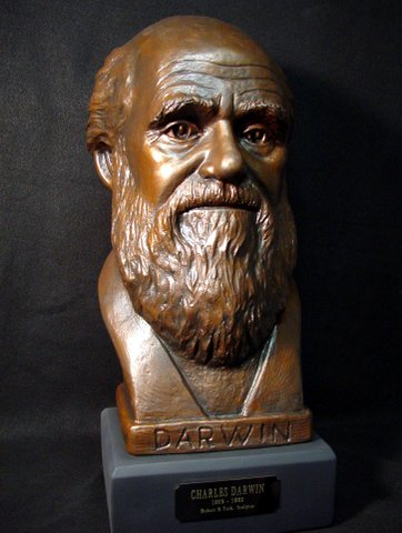 Large Bust of Charles Darwin